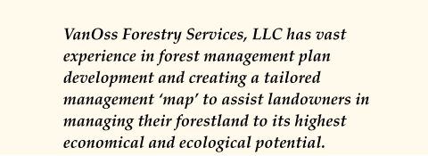 VanOss Forestry Services, LLC has vast experience in forest management plan development and creating a tailored management 'map' to assist landowners in managing their forestland to its highest economical and ecological potential.